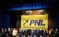 Probleme la PNL: liberalii se afla in cautarea unei conduceri noi, cu autoritate