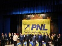 Ioan Dirzu: Pentru PSD nu conteaza cine castiga sefia Noului PNL