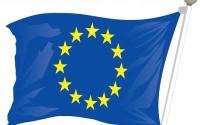 ALEGERILE EUROPARLAMENTARE IN JUDETUL NOSTRU