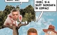 S-A SUIT SCROAFA-N COPAC