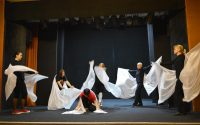 Alba Iulia: Teatrul Prichindel alaturi de un artist care are sindromul Down