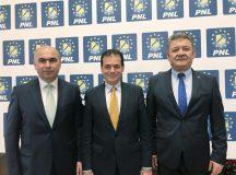Pedelistii Turcan, Hava, Boc si Falca si-au impus presedintele la PNL