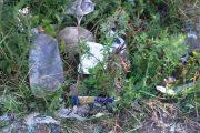 Alba Iulia: Mizerie si sobolani pe strada in zona Ambient
