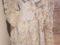 Artefact de epocă antică recuperat de poliţiştii din Alba