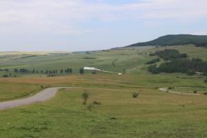 Ministrul Agriculturii: Fermierii români vor primi 61 de euro pe hectar