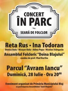 Concert-in-parc folclor