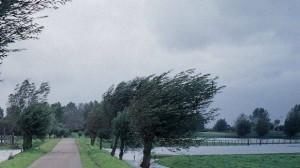 Avertizare meteo de vânt și ploi în toată țara pentru miercuri și joi