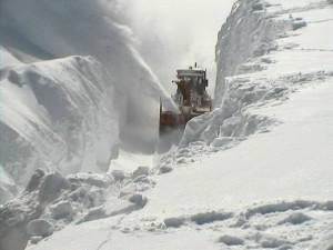 snowstormcleanup