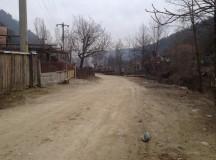 Drumul de pe Valea Vinţului distrus de transporturile de lemne