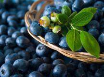 178 de kilograme de afine confiscate în Apuseni