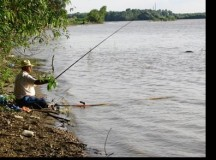 Prinşi de jandarmi la pescuit pe Târnava Mare fără permis