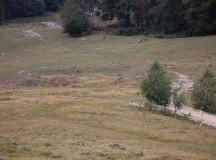 DESCOPERIRE ARHEOLOGICĂ: Turn roman de veghe, identificat lângă anticul Ampelum