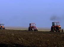 S-a aprobat acordarea ajutorului de stat pentru motorina utilizată în agricultură