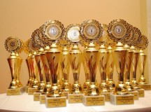 Nominalizări la Gala Voluntarilor din Județul Alba -2013