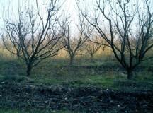 Judetul Alba: Temperaturi de iarna in luna octombrie
