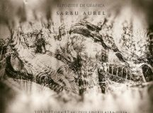 Expozitie Aurel Sarbu la muzeul albaiulian