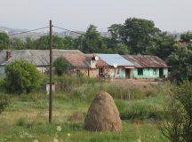 Locuinte din Sard racordate ilegal la reteaua de energie electrica