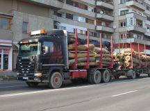 Transport ilegal de lemne prin Alba Iulia