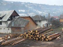 Cimpeni: Firma care se ocupa de comertul cu lemn, amendata pentru munca la negru