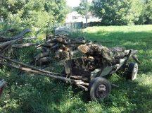 Blaj: Hoti de lemne prinsi in Padurea Carbunari