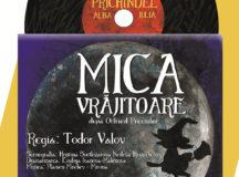 """""""Prichindel"""" va invita la Mica Vrajitoare!"""