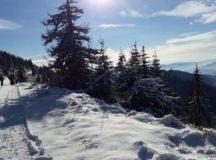In muntii Sureanu s-a intors iarna!
