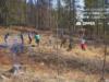 Angajații Zipper au participat la reîmpădurirea unor zone de la Cheia și Dezmir
