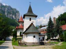 Demersurile ALDE-PSD Alba dau roade-Mănăstirea de la Râmeț va fi reabilitata!