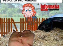 Se coace o alianta PSD-PRO Romania?