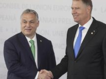"""Președintele Iohannis se """"luptă"""" doar cu cățeii sau se ia și de dulăi?"""