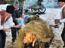 Efectuarea examenului trichineloscopic la carnea de porc