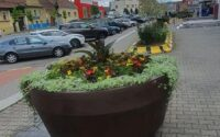 Primăria Sebeș –  un nou tun financiar! Ghiveciul de flori care emană oxigen prin toți porii…de plastic!