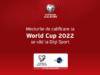 Meciurile de calificare la CM 2022 se văd la Digi Sport